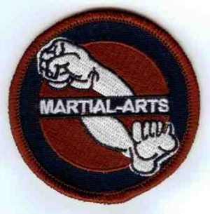 Buy Custom And Stock Martial Arts Embroidered Patches At