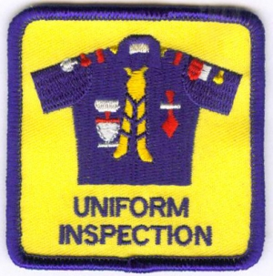 Blue Uniform Inspection